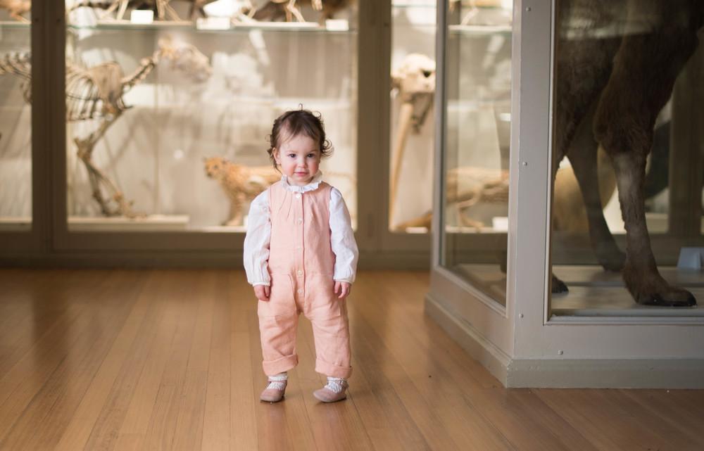 Soor Ploom Museum Natural History-0911.jpg