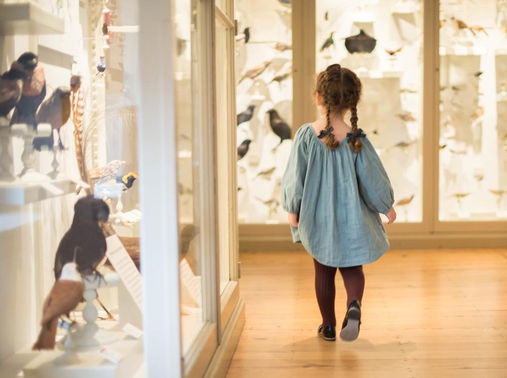 Soor Ploom Museum Natural History-0901.jpg