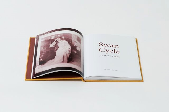 Swan Cycle: Chapter Three