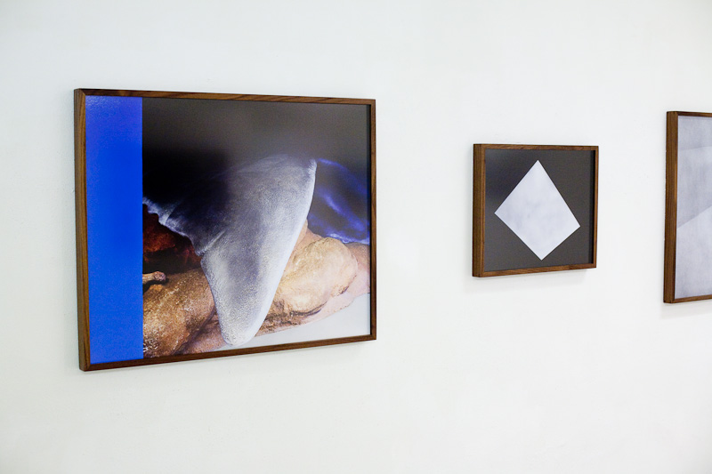 Installation View: Panta Rei