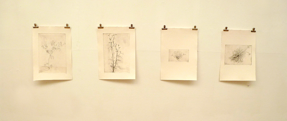 drypoints by  Alison Sloggett