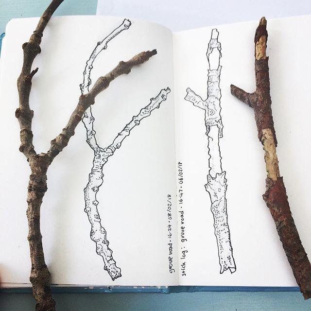 twigs.jpg