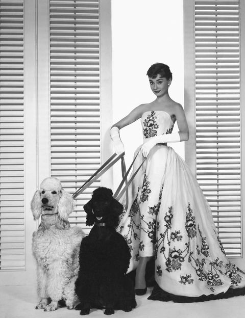 audrey-hepburn-givenchy-gown-1520861518.jpg