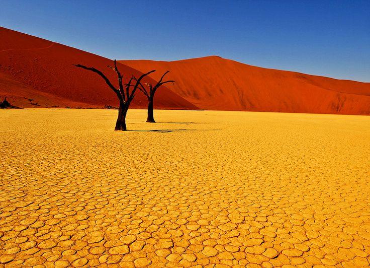 beautiful-desert.jpg