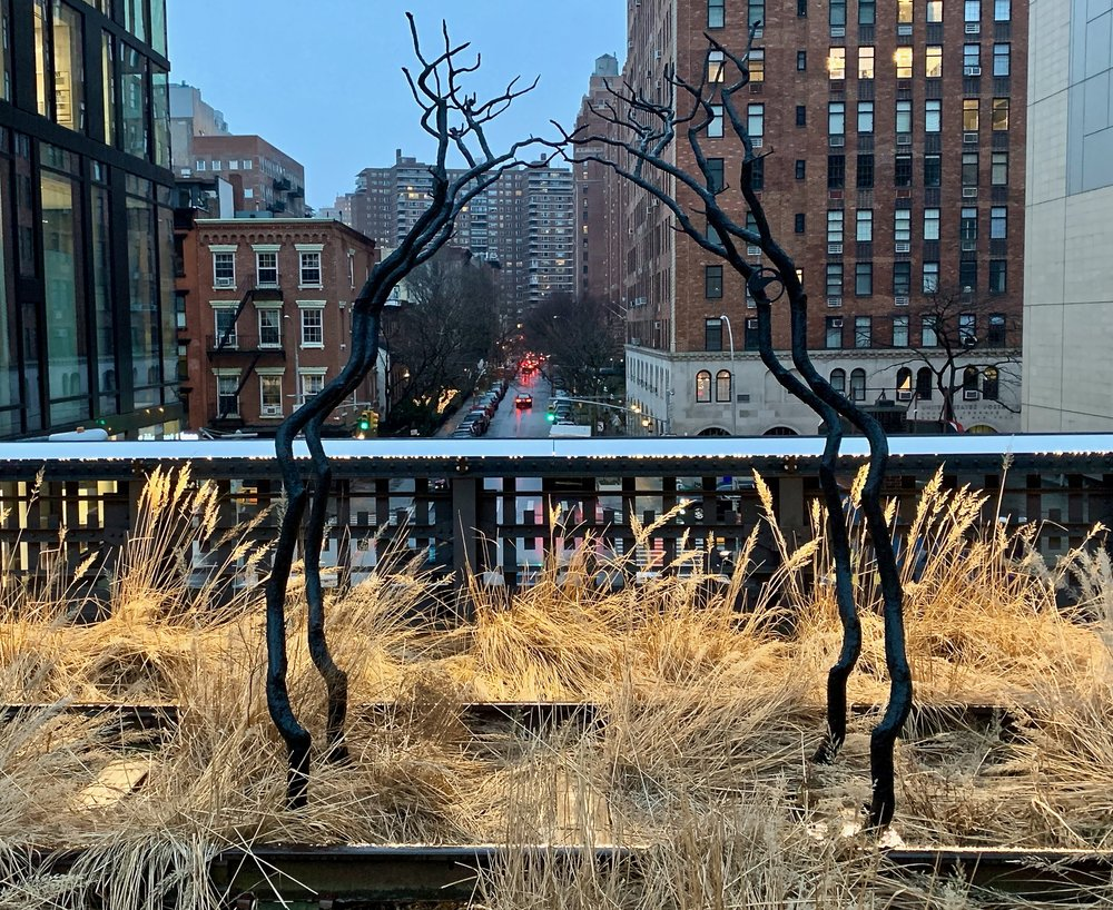 The High Line  in late January