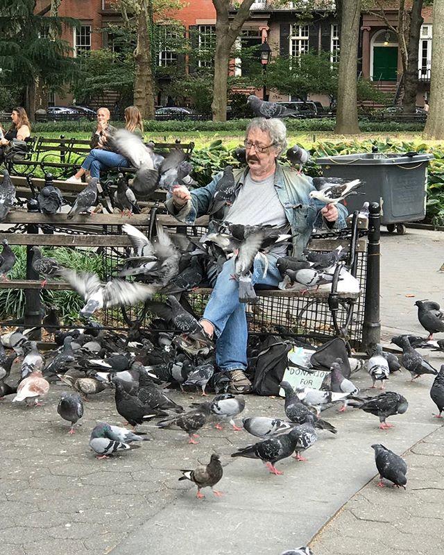 This gentleman was requesting donations to help him purchase pigeon food. Sunday in Washington Square, Park.  #onlyinnewyork, #ilovenewyork, #sundayinthepark, #pigeonsarebirdstoo, #sundaybrunch, #newyorkcity