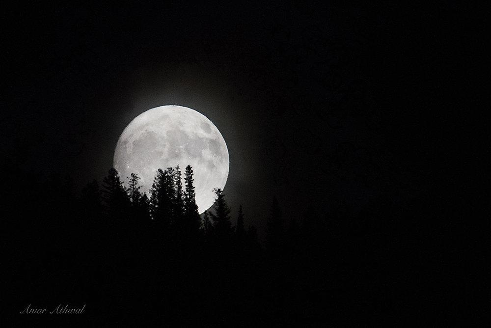 Moon 171202 Amar Athwal.jpg