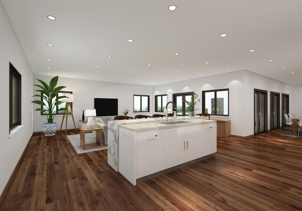 Fluvia House- int 1.jpg