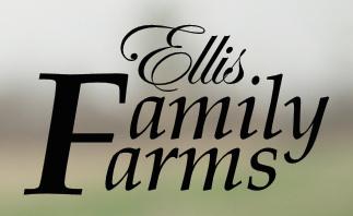 Ellis logo.jpg