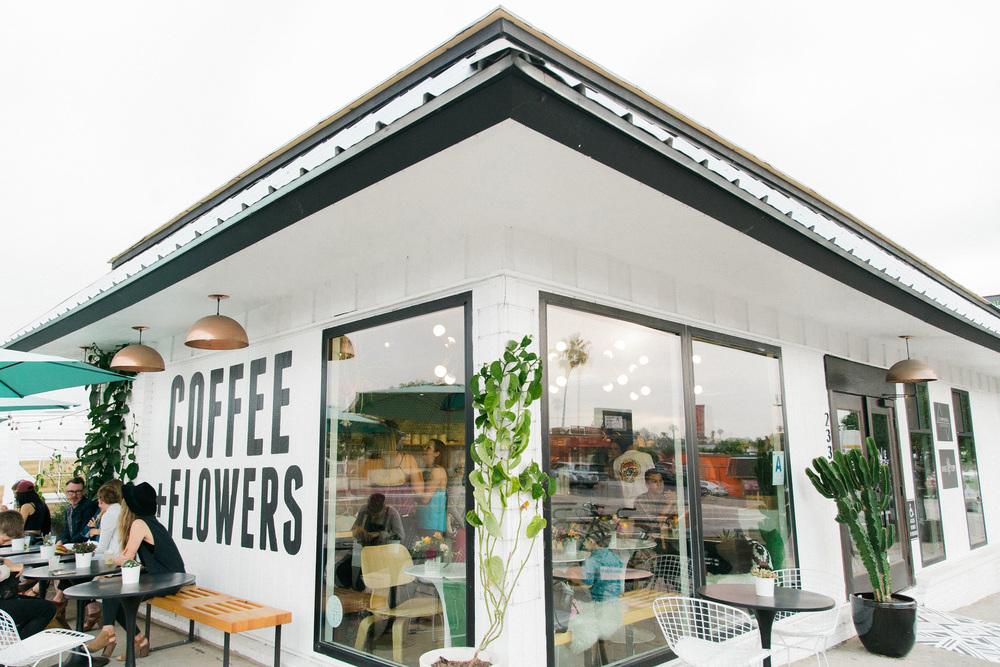 Native-poppy-flower-shop-san-diego