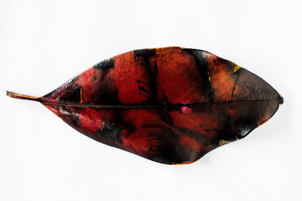 """Untitled"" (Red Stripe Leaf) by Charles Grogg Archival pigment print on Hahnemuhle paper, 14.25"" x 22"" Edition of 10"