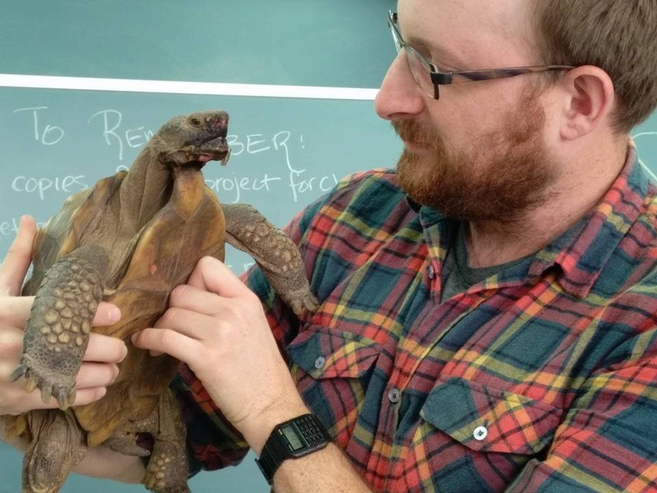 104 Tortoise.jpg