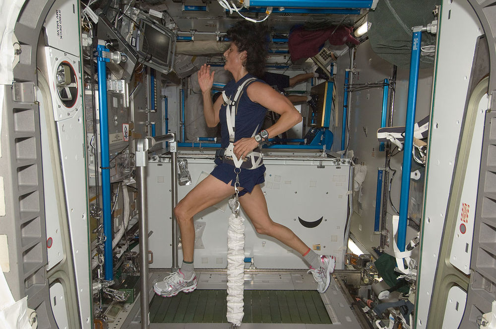 Astronaut  Sunita Williams  ( Exp.32 ) runs, bungeed to the  Combined Operational Load Bearing External Resistance Treadmill  ( COLBERT ), currently aboard the International Space Station.