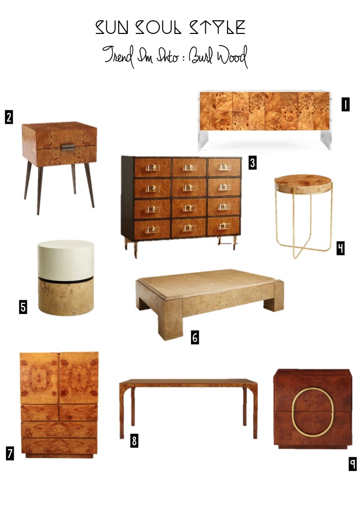 1. Burlwood Bond Console  via Jonathan Adler  // 2. Burl Nightstand  via West Elm  // 3. Burlwood Twelve Drawer Dresser  via Anthropologie  // 4. Dawson Side Table  via One Kings Lane  // 5. Grounded Side Table v ia One Kings Lane  // 6. Block Coffee Table  via One Kings Lane  // 7. Burlwood Chest, Vintage,  Similar Here  // 8. Aqua Dining Table  via CB2  // 8. Metro Nightstand  via CB2