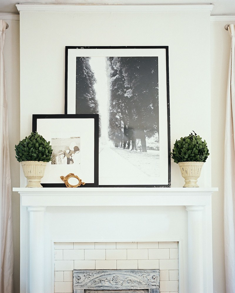 Lovely example of photo art & plant decor from Lonny Magazine!