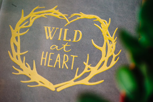 WE ARE WILD HEART