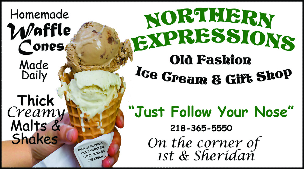 northern expressions web ad.jpg
