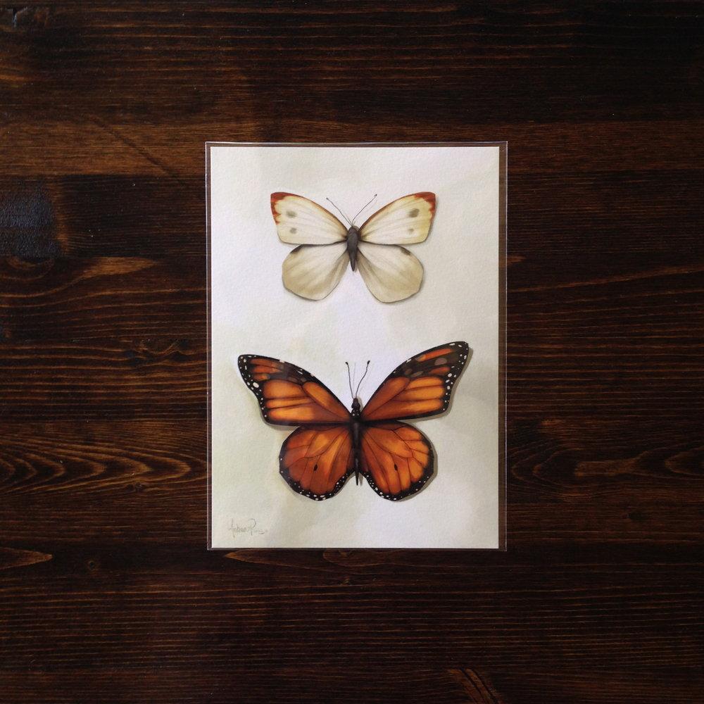 Butterfly_ARUIZ_packaging_01.jpg
