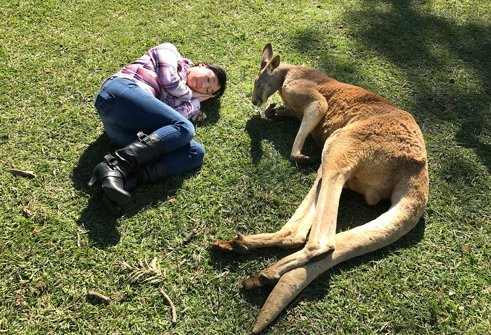 Erin-Shimazu-Photography-Kangaroo-Nap