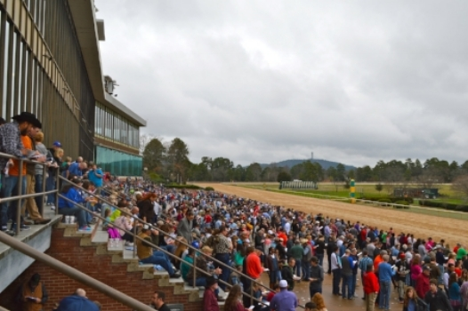 A First-Timer's Guide to Oaklawn Park