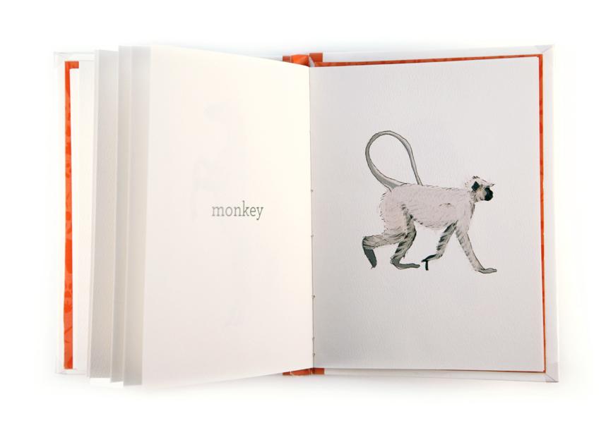 26_monkey.jpg