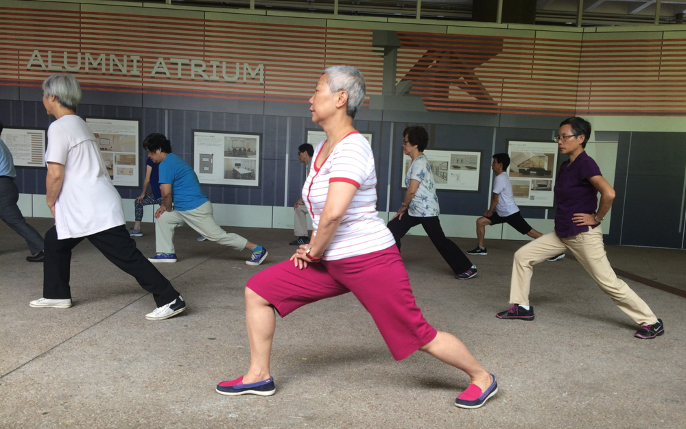 """  Every day is different. When some course or some exercise is finished, I will start another one. So I am active every day, maybe volunteering, maybe dancing, maybe high-tea and having lunch with friends.""—Actively Ageing Grandmother"