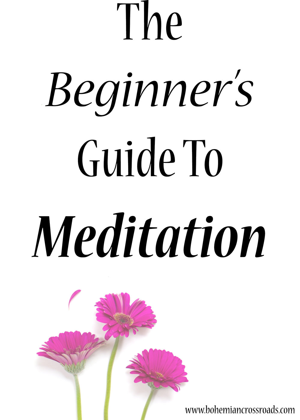 meditation-for-beginners.jpg