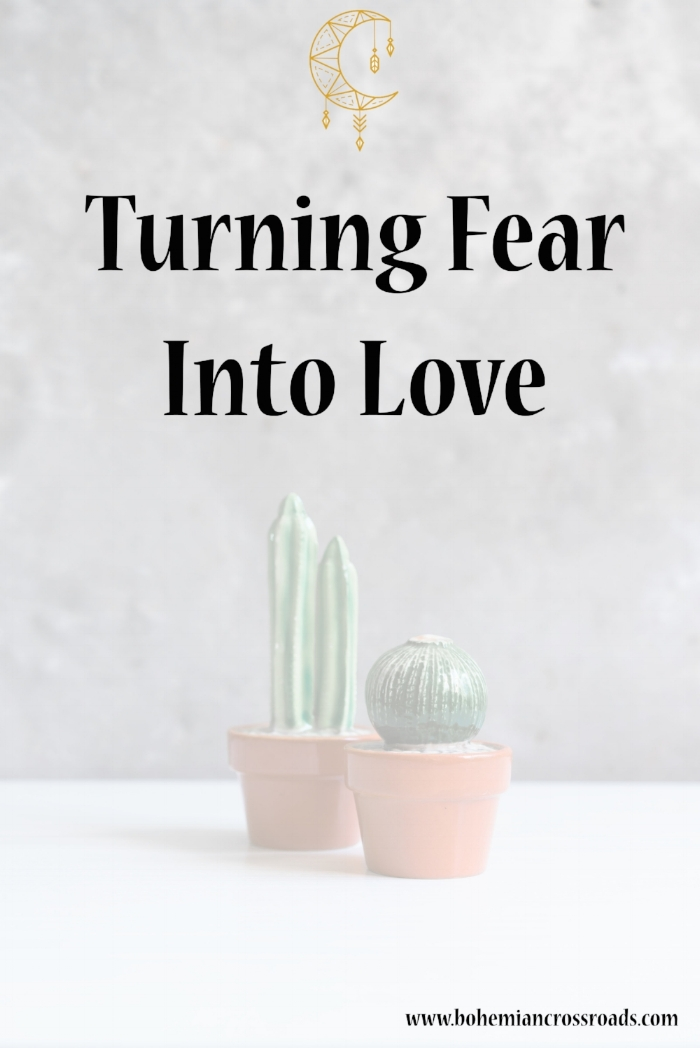 fear to love.jpg