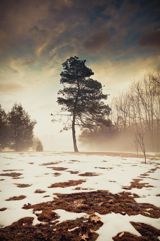 Kaela-Speicher-Photography-.jpg
