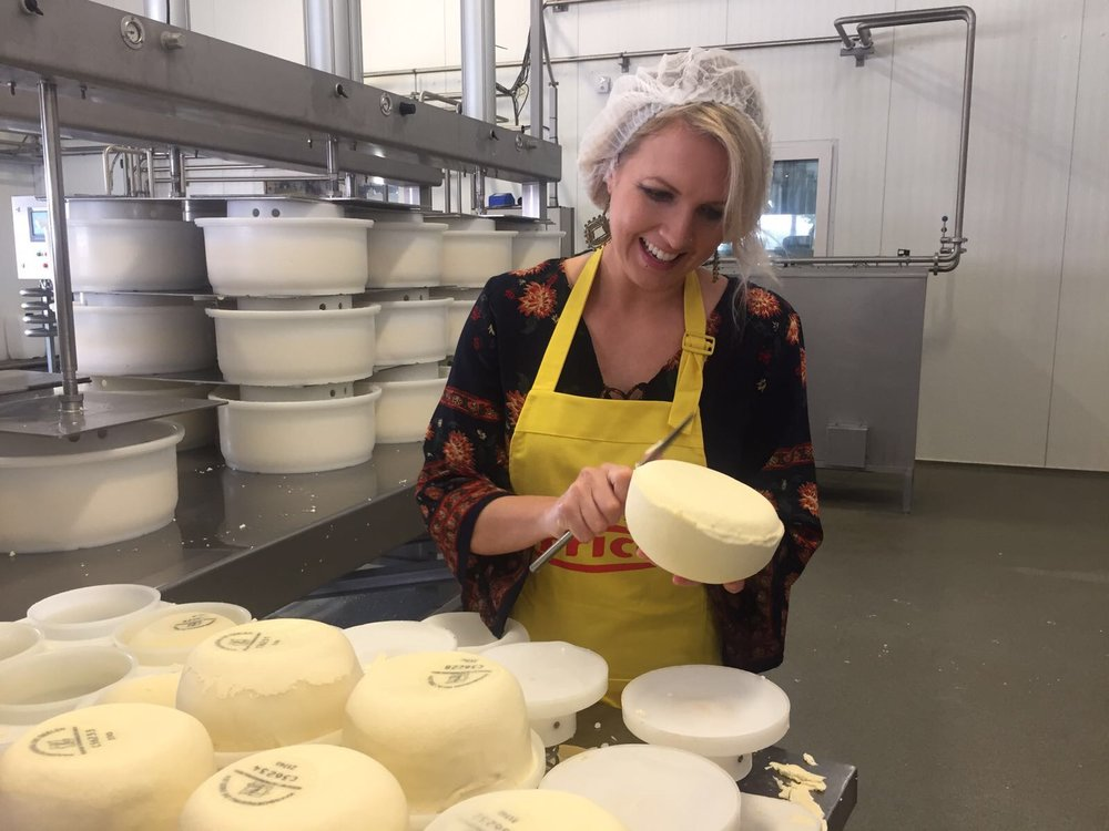 THIS WAS SO SATISFYING. SHAPING THE CHEESE PRIOR TO BRINING AND ONCE THE CURD HAS BEEN PRESSED INTO THE MOLD.