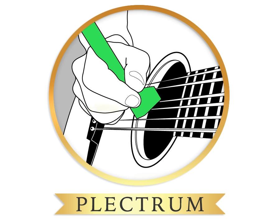 plectrum wide.jpg