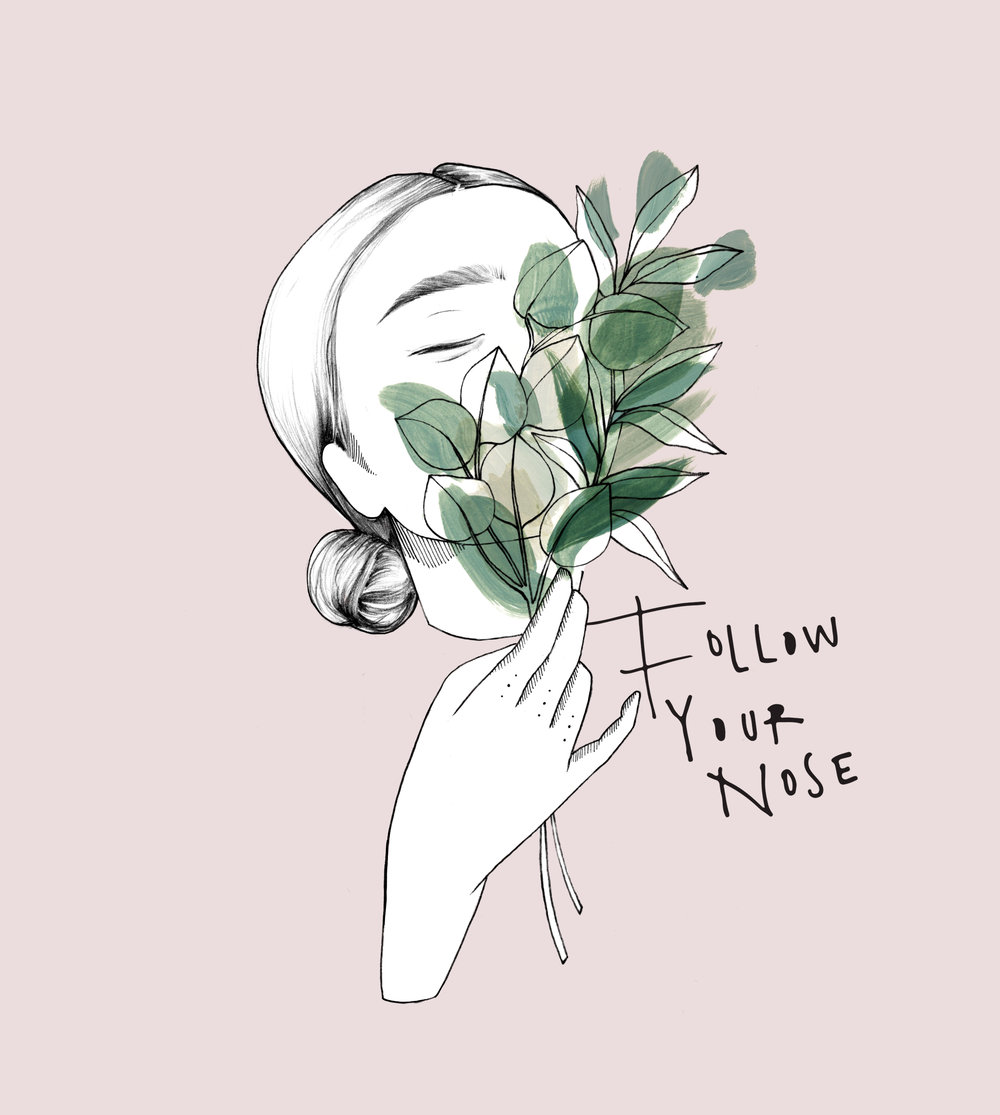 Branding Design & Illustration for Follow Your Nose Floral Stylist