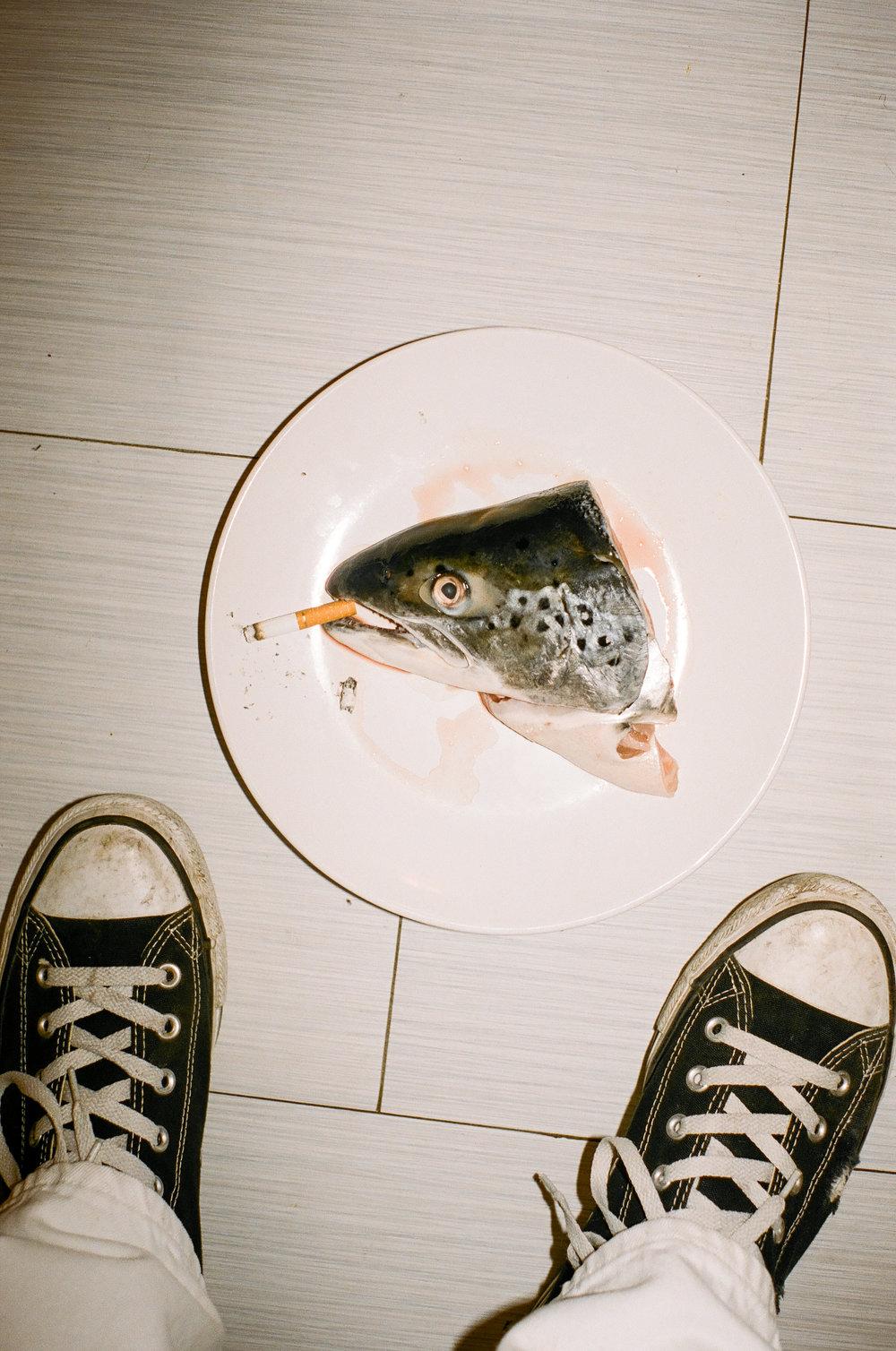 FISH HEAD -1.JPG