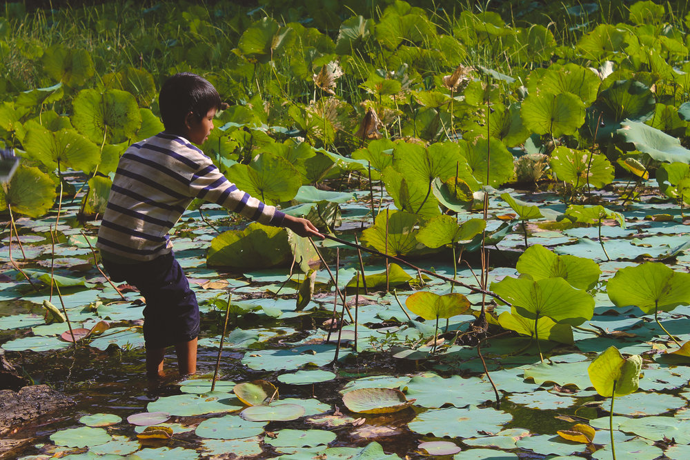 cambodia blog (21 of 34).jpg
