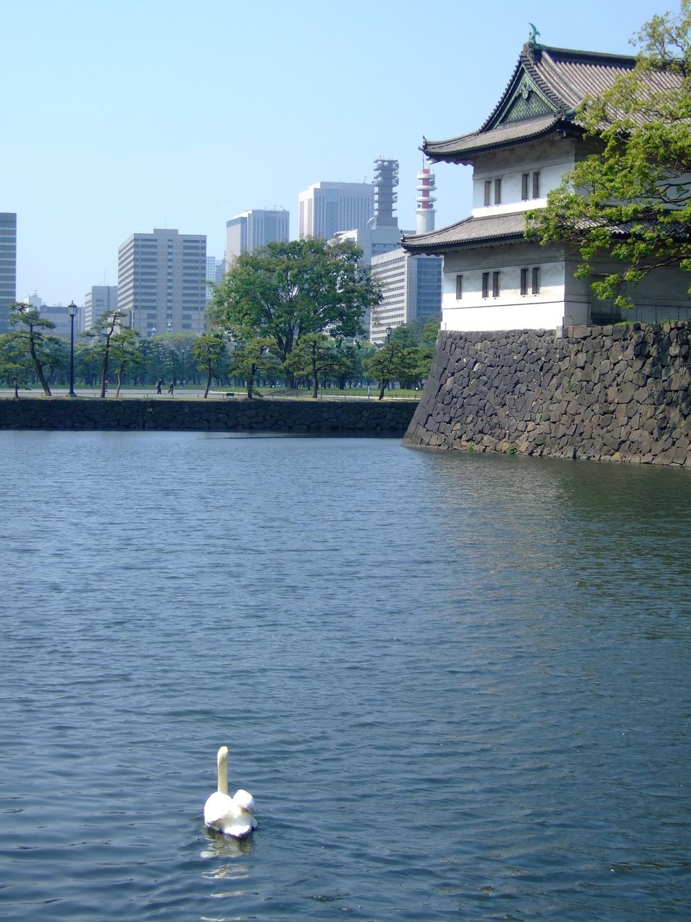 The gardens in Tokyo