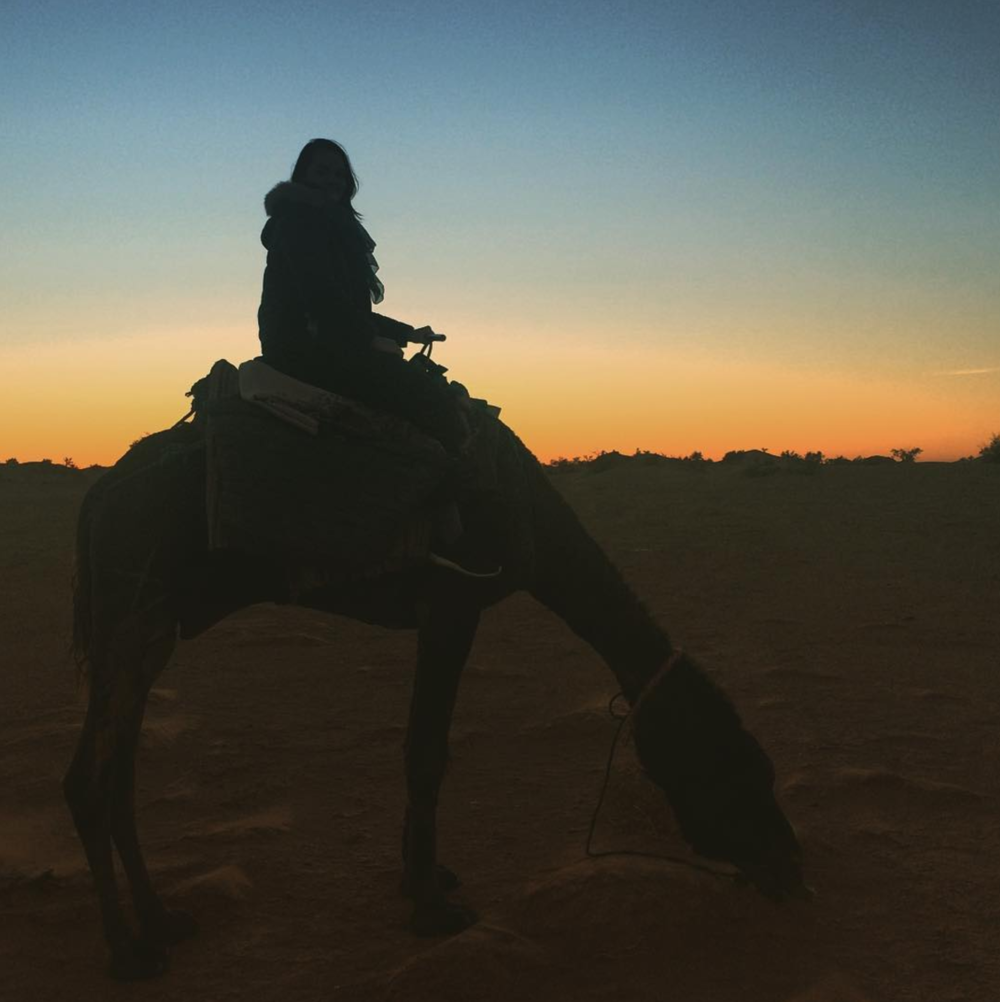 Sitting on a camel at sunset in the Sahara