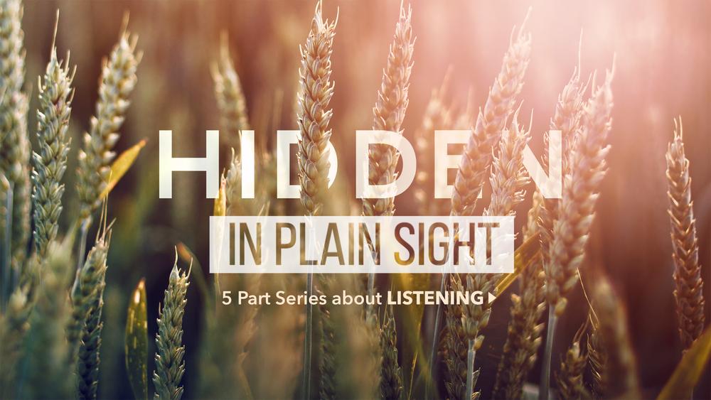 hiddenInPlainSight2.png