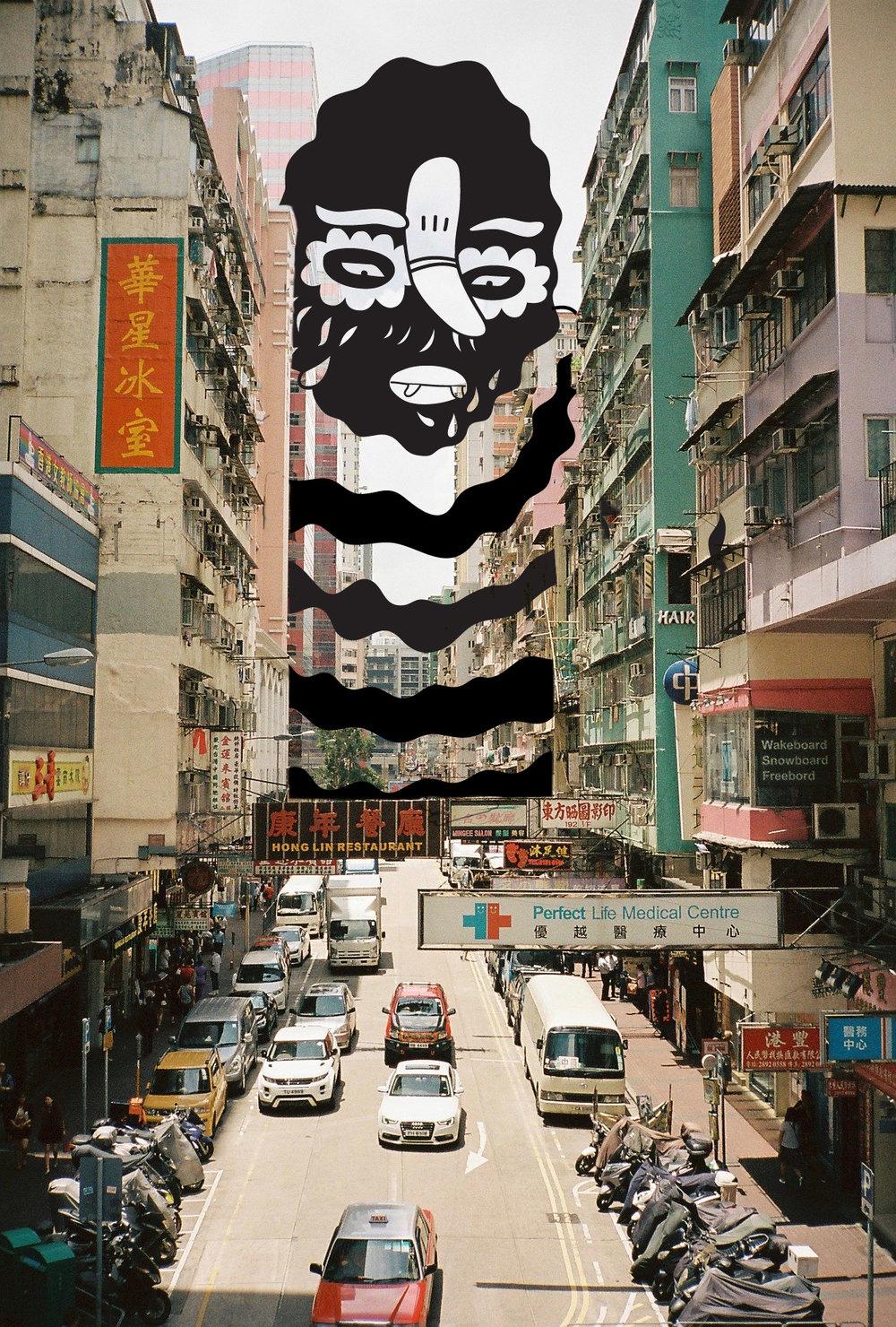 Brolga in Hong Kong.jpg
