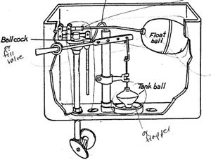Alicia Morga plumbing 101