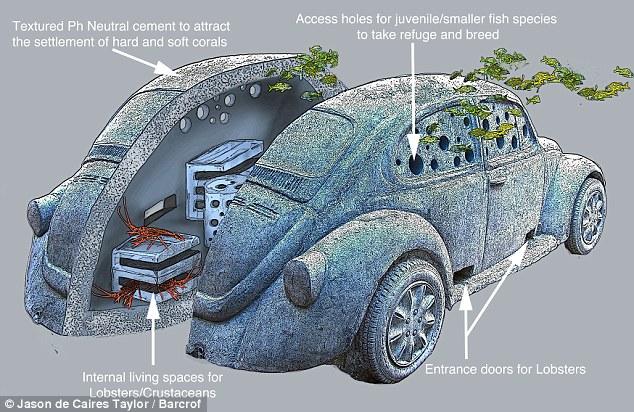 Underwater-Beetle.jpg