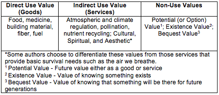 option value biodiversity