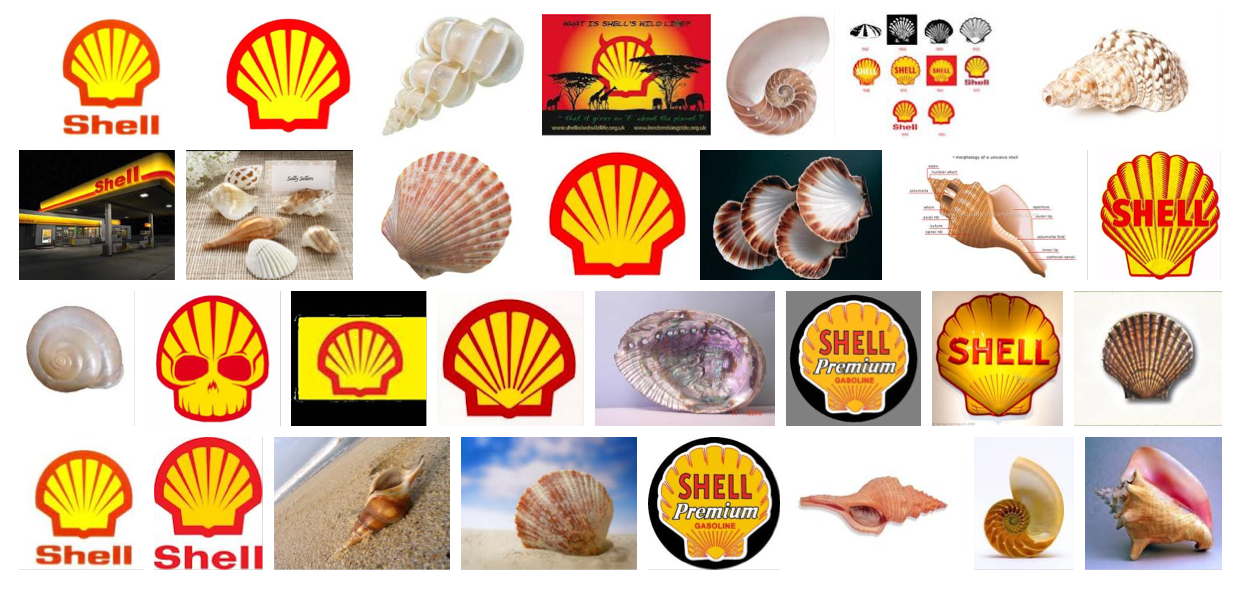 "pergoogle :     ""Shell,"" Google Image search by Rob Walker, December 6, 2011. Suggested by  Molly Block .     I love this! Also, Rob's search yielded a more attractive-looking mix of shell images than mine did."