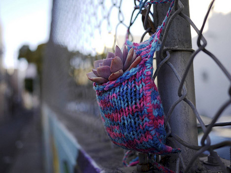 "Via  gardensinunexpectedplaces :      Plantbombing!      Yarnbombing — or the cozying up of the urban landscape with random acts of gorgeous knitting — has already been seen popping up in a number of cities. Now San Francisco-based urban knitter and guerilla gardeners Heather Powazek Champ and Derek Powazek have publicly come out with yarn bombing's next evolution: planting low-maintenance species in beautifully hand-knitted yarn pockets all over their fair city.   Inspired after this year's International Yarn Bombing Day, the husband and wife pair call their project ""Plantbombing,"" and it combines Heather's love of ""urban knitting"" and Derek's skill at gardening. Using yarn, a bit of soil, and some hardy plants, the result is a hands-off, smile-inducing work of art.    For those of you who want to try making your own plant pockets, Heather's site provides the  instructions  to get started.     (via  Plantbombing: Colorful Yarn-Wrapped Plants Soften Up The City : TreeHugger )     Today, in ""things I love."""