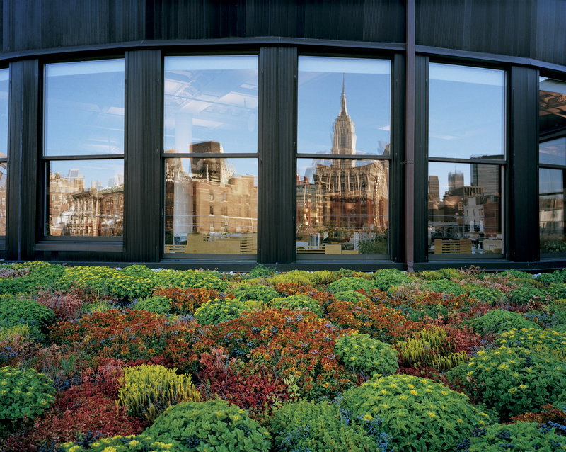 "Nice series of green roof photos.   Via  urbangreens :     ""New York's Empire State Building gleams in the windows of architectural firm Cook + Fox. Specialists in green buildings, the designers wanted their own space to reflect the fact that more plants in more places make for more livable cities.""   Photograph by Diane Cook and Len Jenshel,  National Geographic"