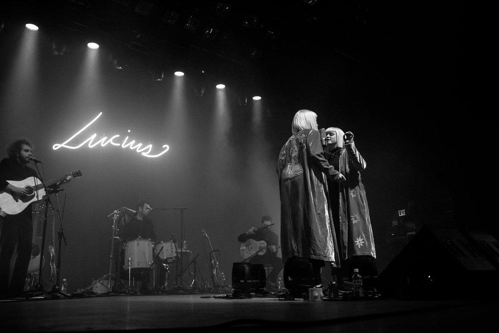 Lucius-2.jpg