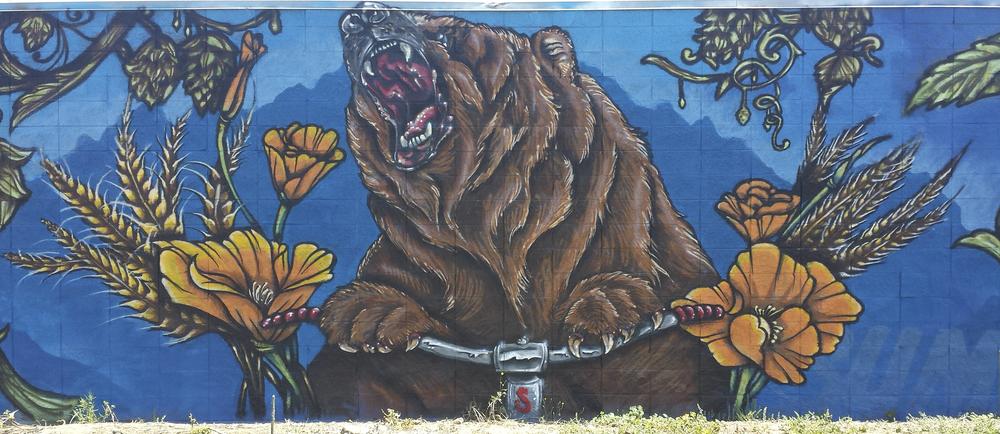 Sudwerk Hopyard Wall (detail), Davis, CA