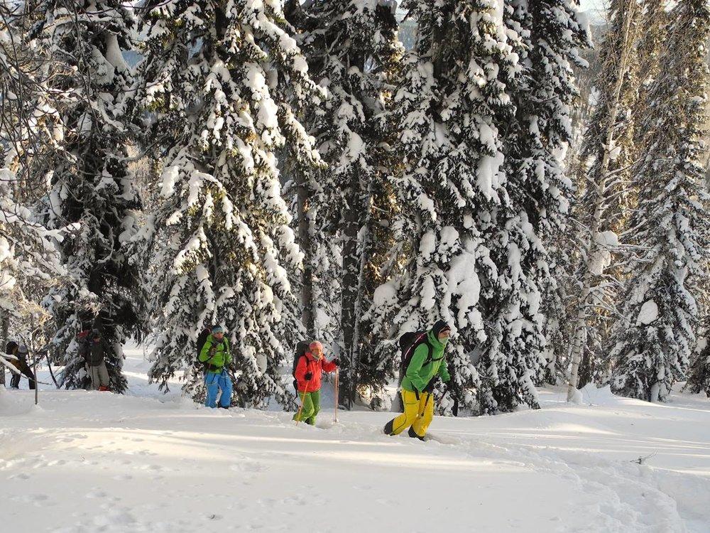 skitouring_siberia_luzhba1.jpg