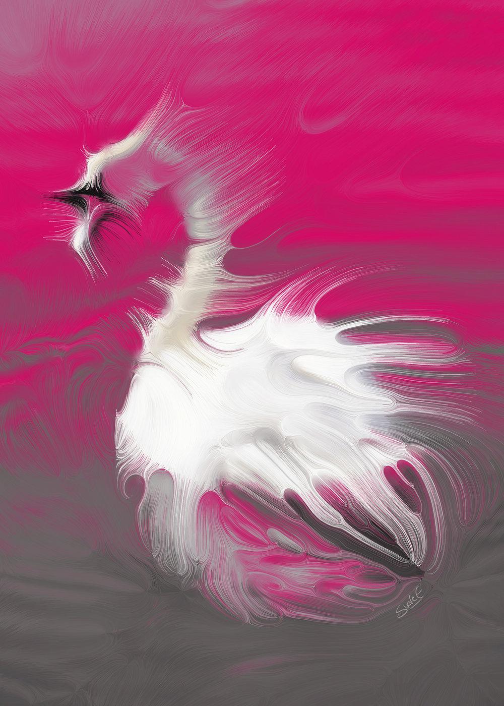 Swan_A9771_signedsmall.jpg