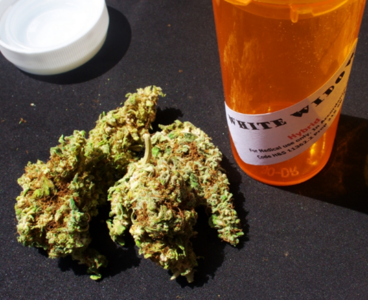 Medical Marijuana (photo: Mark)