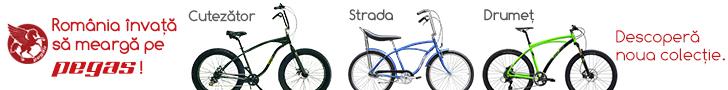 Pegas Bicycles